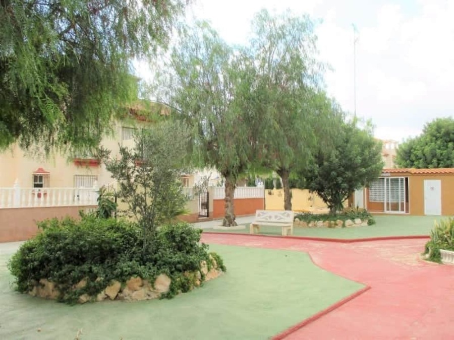 SUN453: Apartment for rent in Playa Flamenca