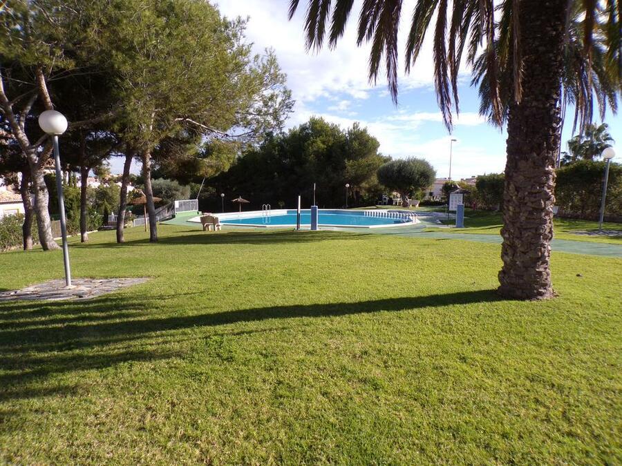 LTPQ001: Quad House for rent in Villamartin ,Pinada